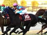 【次走】マルターズディオサは阪急杯か阪神牝馬Sからヴィクトリアマイルへ