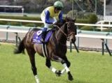 【日経新春杯】フォーム伸びやか 馬体も回復エアウィンザー/馬三郎のつぶやき