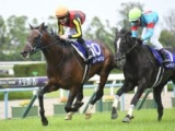 フィエールマンが競走馬登録抹消、種牡馬に