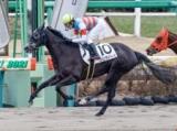 【中山4R新馬戦結果】6番人気のジュンダイハードが差し切り勝ち