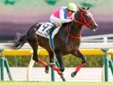 【京成杯】登録馬 グラティアス、タイムトゥヘヴンなど17頭
