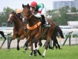 【愛知杯】登録馬 センテリュオ、マジックキャッスルなど26頭