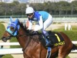 【日経新春杯】登録馬 アドマイヤビルゴ、ヴェロックスなど22頭