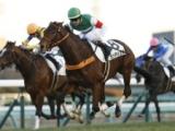【愛知杯 想定騎手】センテリュオはルメール騎手、マジックキャッスルは戸崎圭太騎手