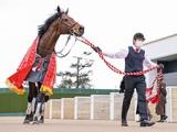 【次走】ダノンスマッシュは川田将雅騎手とのコンビで高松宮記念へ