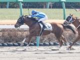 【中山4R新馬戦結果】唯一の関西馬ララシャルロットが押し切りV