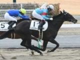 【中京4R新馬戦結果】リノユニヴァースが差し切り新馬勝ち