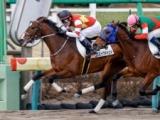 【中山4R新馬戦結果】6番人気の外国産馬コズミックマインドがV
