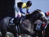 クロフネが死亡 NHKマイルC、ジャパンカップダートの芝・ダート両GI制覇