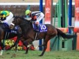 【次走】カレンブーケドールは日経賞へ、松山弘平騎手と新コンビ結成