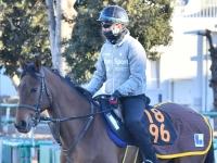 【POG】グランオフィシエ好仕上がり スピード母譲り素質馬