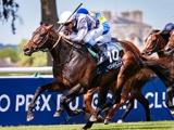 【海外競馬】スタディオブマンの初年度産駒誕生 ディープインパクト産駒の仏ダービー馬