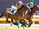 【JRA】日曜東京芝は全5レースでディープインパクト産駒が勝利