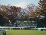【JRA】引き続き東京都等における競馬開催は「当面の間」無観客