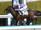 【阪神4R新馬戦結果】サンライズウルスが差し切り新馬勝ち