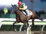 【地方競馬】サンタアニタダービーポイント、選考対象馬は「なし」に