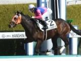 【阪神4R新馬戦結果】8番人気メイショウサトワが2番手から抜け出しV