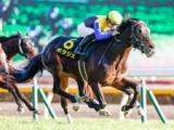 【次走】4連勝中のポタジェは北村友一騎手との新コンビで金鯱賞へ