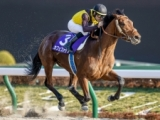 【フェブラリーS結果】4歳馬カフェファラオがGI初制覇! C.ルメール騎手は連覇達成