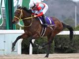 【名古屋大賞典】(名古屋、3月11日) JRA所属の出走予定馬及び補欠馬について