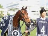 【海外競馬】オーストラリアのセールでロードカナロア産駒が90万豪ドルで落札