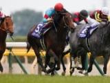 【次走】インディチャンプは高松宮記念へ スプリント戦初挑戦