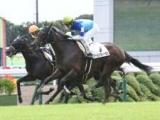 【次走】アールドヴィーヴルは引き続き松山弘平騎手とのコンビで桜花賞へ