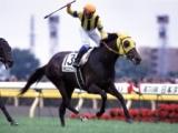 2003年の二冠馬ネオユニヴァースが死亡 産駒にはヴィクトワールピサなど