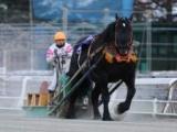 【地方競馬】ばんえい記念で引退するオレノココロなど3頭の引退セレモニー実施