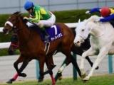 【桜花賞】サトノレイナスとアカイトリノムスメが併せ馬/馬三郎のつぶやき