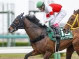【マーチS】登録馬 スワーヴアラミス、デルマルーヴルなど20頭