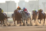 【地方競馬】大井競馬、今年度の総売得金は1728億円 1日平均は過去最高額に! 開催執務委員長「これからも日本を明るく元気にできるように全力で」