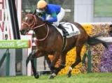 【ニュージーランドT】登録馬 バスラットレオン、アヴェラーレなど22頭