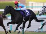 【阪神牝馬S展望】近年は巻き返しも多いヴィクトリアMの前哨戦