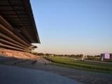 【JRA】東京競馬場の入場は指定席の事前購入者限定 4月24日から5月2日まで