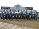 【海外競馬】米・ベルモントパーク競馬場厩舎の火災で2頭が死亡