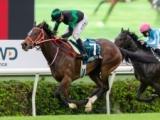 【JRA】香港チャンピオンズデー出走の日本馬5頭が帰国