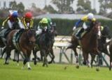 【NHKマイルC予想】AIが今回推す馬は…混戦の中、指名した1頭/JRA重賞レース展望