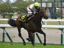 ダディーズビビッドが4馬身差の圧勝を飾った