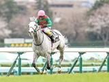 【京都ハイジャンプ想定騎手】トラストは熊沢重文騎手、ケイブルグラムは蓑島靖典騎手