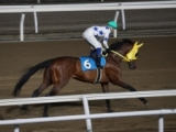 【門別競馬情報】JRA北海道シリーズも始まる中、絶好調つづくホッカイドウ競馬。今週ラスト開催のメイン12Rは「ウインブライト賞」/地方競馬情報