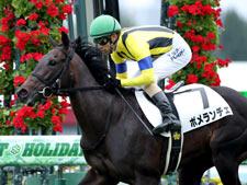 先週の新馬戦をレコード勝ちしたポメランチェ(c)netkeiba.com、撮影:山中博喜
