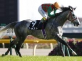 【JRA】トラストが競走馬登録抹消、乗馬に 16年札幌2歳S覇者、障害でも4勝あげる