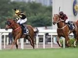 【海外競馬】香港のタイムワープとグロリアスフォーエバーが引退 全兄弟でともに香港C制覇