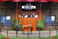 【セレクトセール】藤田晋氏が15・4億円爆買い「ウマ娘」社長「競馬界に還元できれば」