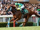 【アイビスSD想定】直線競馬の雄ライオンボス、昨年の京王杯2歳S覇者モントライゼなど