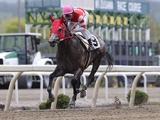 【地方競馬】オグリキャップの孫・ミンナノヒーローが予後不良に 前走大差勝ちで注目を集める