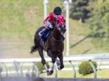 【盛岡・マーキュリーC結果】マスターフェンサーが2馬身差完勝で連覇達成!