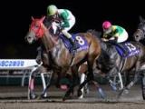 【王冠賞 予想】史上6頭目のホッカイドウ競馬3歳三冠馬誕生なるか