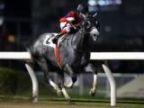 【川崎・高津オープン結果】池谷匠翔騎手騎乗の3番人気コウギョウブライトが勝利